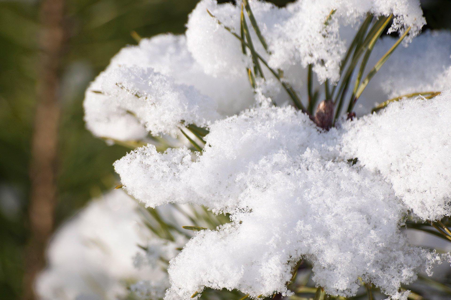 5 Reasons I'm Choosing to Love Winter